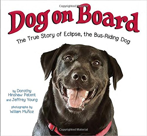 Dog on Board: The True Story of Eclipse, the Bus-Riding Dog Image