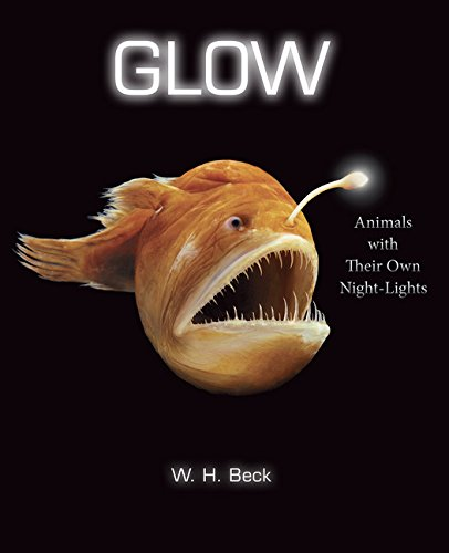 Glow: Animals with Their Own Night-Lights Image