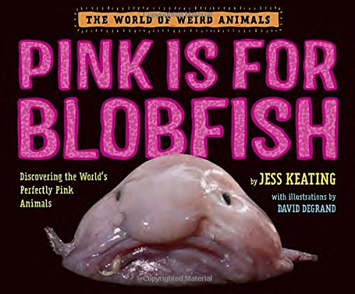 Pink is For Blobfish: Discovering the World