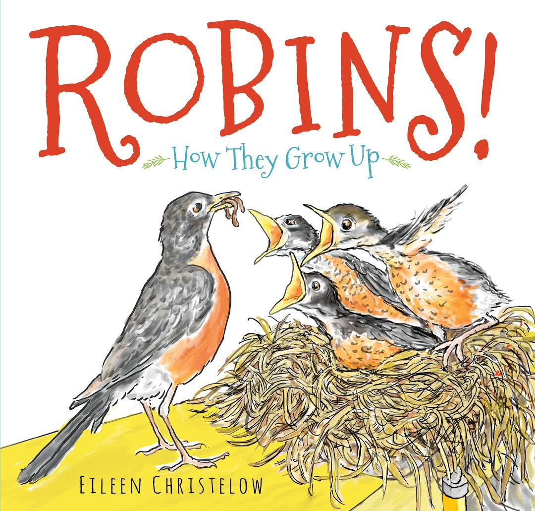 Robins!: How They Grow Up Image