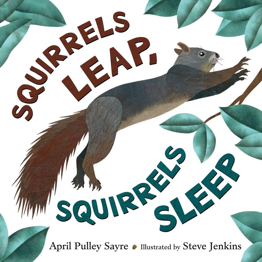 Squirrels Leap, Squirrels Sleep Image