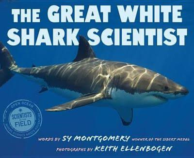 The Great White Shark Scientist Image