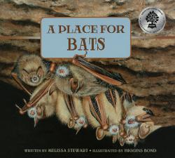 Place for Bats Image