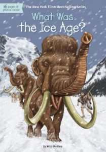 What Was the Ice Age? Image