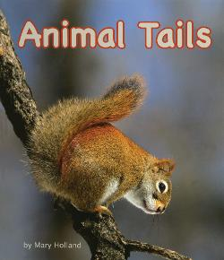 Animal Tails Image