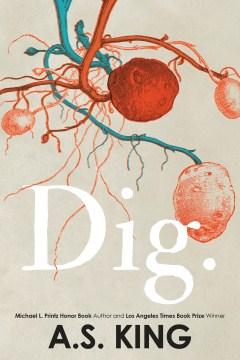 Dig Image
