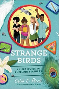 Strange Birds: a field guide to ruffling feathers Image